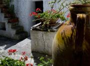 il-giardino-07